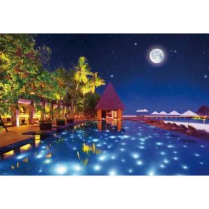 美の風景 スターライト リゾート(31-425)ビバリー 1000ピース|hobby-zone