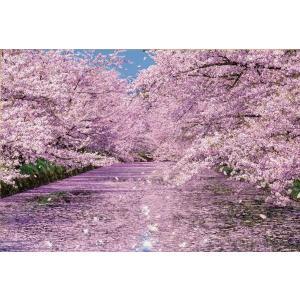 日本風景(桜) 弘前公園の桜(51-251)1000ピース ビバリー|hobby-zone