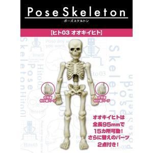 ポーズスケルトン ヒト 03 オオキイヒト(再販) リーメント【ゆうパケット対応】|hobby-zone