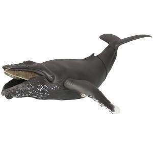 ソフビトイボックス 013 クジラ(ザトウクジラ) 海洋堂|hobby-zone