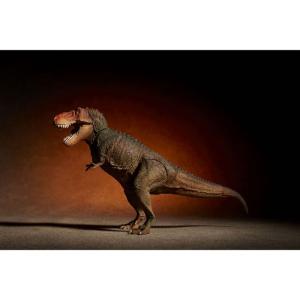 ソフビトイボックス 018C ティラノサウルス(クラシックイメージカラー) 海洋堂【06月予約】 hobby-zone