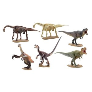 miniQ ミニチュアキューブ 019 恐竜発掘記8 -恐竜造形大博覧会- 1BOX(8個入り) 海洋堂【09月予約】|hobby-zone