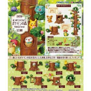 あつめて!かさねて!ポケモンの森 1BOX(8個入り)(再販) リーメント【07月予約】|hobby-zone