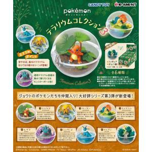 ポケットモンスター テラリウムコレクション 3 1BOX(6個入り) リーメント【07月予約】|hobby-zone