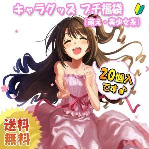 【セット6607】キャラクターグッズ20点プチ福袋(萌え・美少女系)|hobby-zone