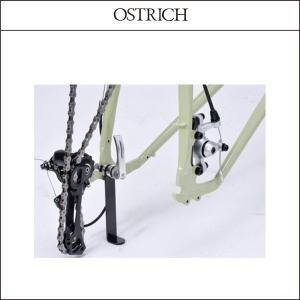 OSTRICH/オーストリッチ   エンドスタンド +110mm