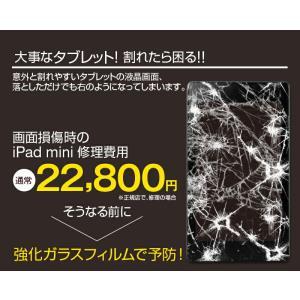 タブレット用 液晶保護カバー 強化ガラスフィルム iPad mini air nexus7 Xperia  SOL24 ZETA SH-06E 対応ガラスフィルム 保護フィルム0.33mm|hobinavi|04