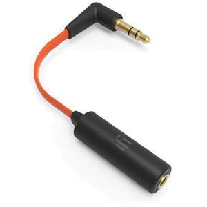 アイファイ・オーディオ ヘッドホン・イヤホン用ノイズクリーナーiFi-Audio EarBuddy|hobipoke