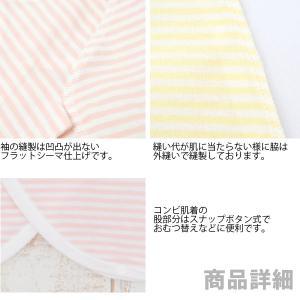 新生児先染ボーダー短肌着・コンビ肌着の2枚組・日本製|hohoemi|02