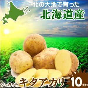 母の日 ギフト 贈り物 じゃがいも 越冬じゃがいも 北海道産 じゃがいも キタアカリ (Mサイズ)1箱 10kg入り / 10キロ 北海道 きたあかり|hokkaido-gourmation