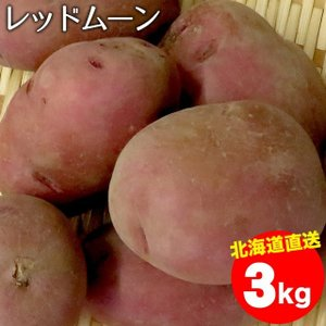 母の日 送料無料 北海道産 じゃがいも レッドムーン(M〜2Lサイズ)1箱3キロ入り / 3キロ 3kg 取り寄せ 北海道 REDMOON|hokkaido-gourmation