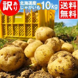 訳アリ 産地直送 越冬じゃがいも 送料無料 北海道産 じゃがいも 訳あり北海道産じゃがいも(10kg)/ 10kg ジャガイモ 北海道 産地直送 とうや 男爵薯|hokkaido-gourmation