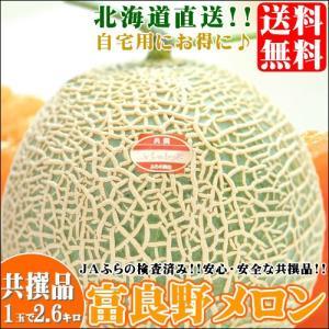 2018年ご予約承り中 8月出荷開始 北海道 富良野産 富良野メロン(共撰品 約2.6kg×1玉)|hokkaido-gourmation