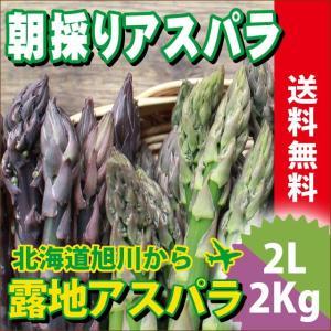 2017年ご予約承り中 5月出荷開始 送料無料 北海道産 グリーンアスパラガスと紫アスパラガス 2色セット 各1kg 計2kg 2Lサイズ【産地直送 ギフト旬 露地】|hokkaido-gourmation