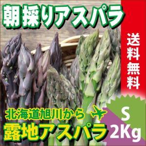 2017年ご予約承り中 5月出荷開始 送料無料 北海道産 グリーンアスパラガスと紫アスパラガス 2色セット 各1kg 計2kg Sサイズ【産地直送 ギフト 旬 露地】|hokkaido-gourmation