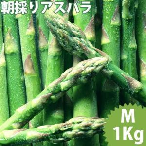 送料無料 北海道産 グリーンアスパラガス 1kg Mサイズ / 国産 国内産 産地直送 お取り寄せ 新鮮 ギフト 旬 露地物|hokkaido-gourmation