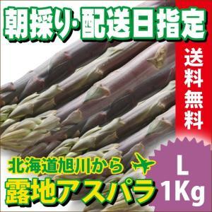 2017年ご予約承り中 5月出荷開始 送料無料 北海道産 紫アスパラガス 1kg Lサイズ【国産 国内産 産地直送 お取り寄せ 新鮮 ギフト 旬 露地物 野菜】|hokkaido-gourmation