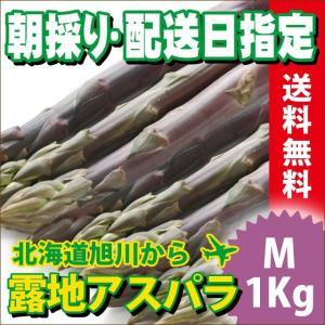 2017年ご予約承り中 5月出荷開始 送料無料 北海道産 紫アスパラガス 1kg Mサイズ【国産 国内産 産地直送 お取り寄せ 新鮮 ギフト 旬 露地物 野菜】|hokkaido-gourmation