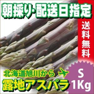 2017年ご予約承り中 5月出荷開始 送料無料 北海道産 紫アスパラガス 1kg Sサイズ【国産 国内産 産地直送 お取り寄せ 新鮮 ギフト 旬 露地物 野菜】|hokkaido-gourmation