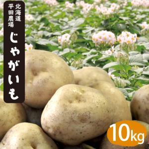 送料無料 北海道産 雪蔵じゃがいも(とうや・男爵・キタアカリ・メークイン)Lサイズ 10kg / 産地直送 越冬じゃがいも 北海道産 hokkaido-gourmation