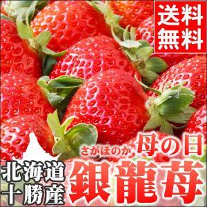 母の日遅れてごめんね!ギフト フルーツ 北海道産 銀龍苺 さがほのか 2シート カーネーション付 / イチゴ 花 メッセージカード|hokkaido-gourmation