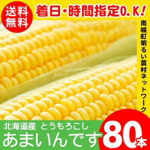 2019年ご予約承り中 8月出荷開始 北海道産 とうもろこし 送料無料 あまいんです 80本入り 南幌町明るい農村ネットワーク / 北海道|hokkaido-gourmation