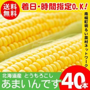 2019年ご予約承り中 8月出荷開始 北海道産 とうもろこし あまいんです 40本入り 南幌町明るい農村ネットワーク / 北海道|hokkaido-gourmation
