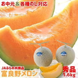 2019年ご予約承り中 7月出荷開始 早期割引 北海道 富良野産 富良野メロン(共撰 秀品 約1.6kg×2玉)|hokkaido-gourmation