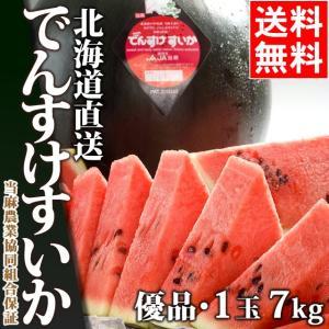 送料無料 北海道 当麻町 でんすけすいか(優品 2L 約7kg×1玉) / 北海道産 でんすけすいか|hokkaido-gourmation