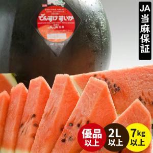 2019年ご予約承り中 7月出荷開始 早期割引 北海道 当麻町 でんすけすいか(秀品 3L 約8kg×1玉) / 北海道産 すいか スイカ|hokkaido-gourmation