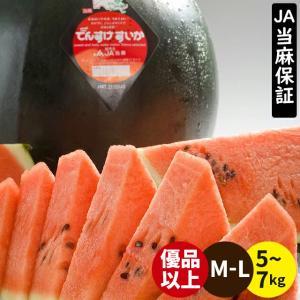 2018年ご予約承り中 7月出荷開始 北海道 当麻町 でんすけすいか(秀品 M 約5kg×1玉) /...