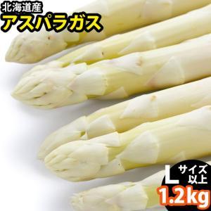 遅れてごめんね!父の日 送料無料 北海道産 ホワイトアスパラガス 1.2kg(2L/Lサイズ混合) / アスパラ 旬 野菜 産地直送|hokkaido-gourmation