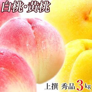 2018年ご予約承り中 8月出荷開始 山形県産 白桃(はくと...