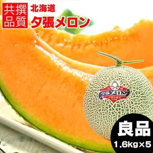 2019年ご予約承り中 6月出荷開始 北海道産 夕張メロン(共撰 良品 約1.6kg×5玉) / ギフト 産地直送 果物 フルーツ 贈り物|hokkaido-gourmation