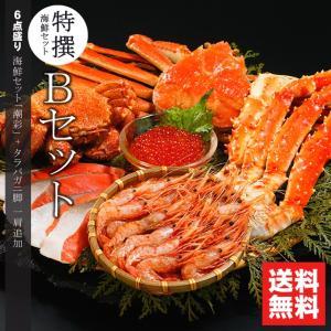 お中元ギフト ギフト 内祝い 特選 海鮮セット B / 北海道 かにセット カニ 詰め合わせ 盛り合わせ セット 水産