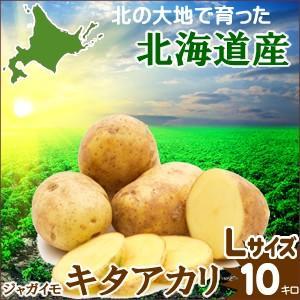 母の日 ギフト 贈り物 じゃがいも 越冬じゃがいも 北海道産 じゃがいも キタアカリ (Lサイズ)1箱 10kg入り / 10キロ 北海道 きたあかり|hokkaido-gourmation