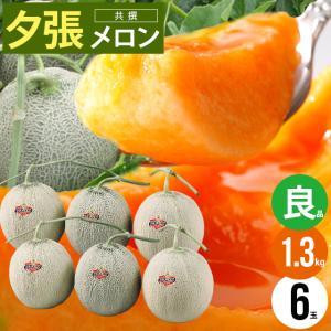 2019年ご予約承り中 6月出荷開始 北海道産 夕張メロン(共撰 良品 5〜6玉 8kg) / 産地直送 果物 フルーツ 贈り物|hokkaido-gourmation