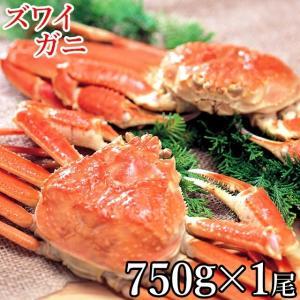 蟹 セット ズワイガニ1尾750g(ボイル済み)  かにセット カニ 詰め合わせ ずわいがに姿