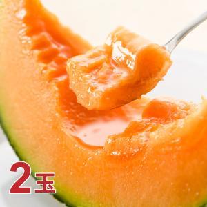 <2021年分終了しました>送料無料!北海道富良野市 吉田農園 ふらのメロン キングルビー2玉 1玉あたり約1.8kg 同梱不可 富良野メロン hokkaido-loco