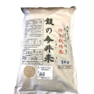 北海道産 おぼろづき 精米 5kg 特別栽培米 銀の今井米(いまいまい) hokkaido-loco