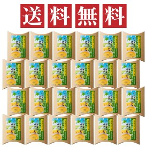北海道サロマ産えびすかぼちゃで作ったパンプキンポタージュ4袋入り×24個セット【送料無料+代引き・後払い手数料無料】|hokkaido-loco