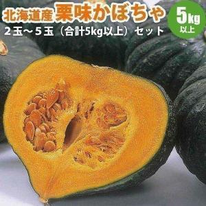 カボチャセット 北海道 栗味 かぼちゃ 2玉〜5玉 合計5kg以上 栗のような味の カボチャ