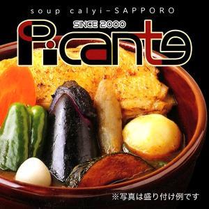 ピカンティ チキンスープカリー月の薫り スープカレー 北海道 お土産