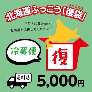 北海道ふっこう復袋 5,000円 (冷蔵便) 送料込み 福袋 日本ふっこうプロジェクト 北海道 復興 フードロス
