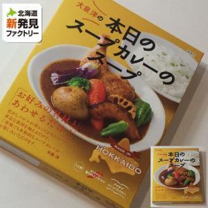カレー ベル食品 北海道 お土産 本日のスープカレーのスープ 201g 「ゆうパケット対象商品」 有名店カレー ご当地カレー お取り寄せ プレゼント 贈り物|hokkaido-shinhakken
