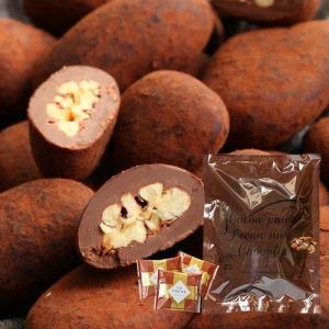 サロンドロワイヤル ココアがけピーカンナッツチョコレート 袋入り