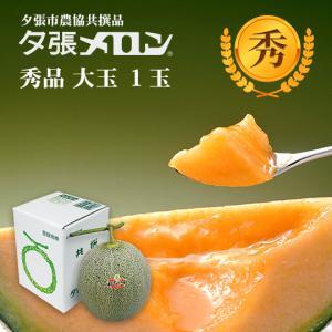 ハロウィン 夕張メロン 共選 秀品大玉(約1.6kg) 1玉(代引不可)|hokkaidogb