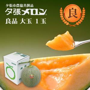 クリスマス 夕張メロン 共選 良品大玉(約1.6kg) 1玉(代引不可)|hokkaidogb