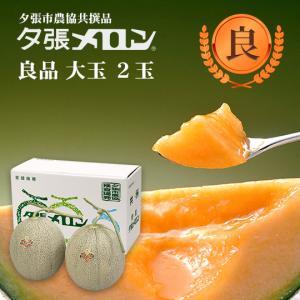 クリスマス 夕張メロン 共選 良品大玉(約1.6kg) 2玉(代引不可)|hokkaidogb