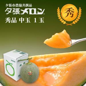 夕張メロン 共選 秀品中玉(約1.3kg) 1玉(代引不可)|hokkaidogb